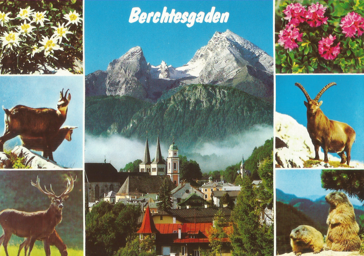 Another Postcard from Germany